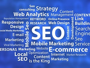 SEO Services wording